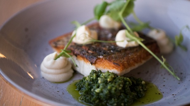 Cone Bay barramundi with cauliflower and salsa verde.