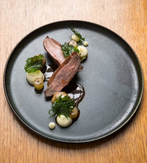Duck with nettles, grapes and parsnip.