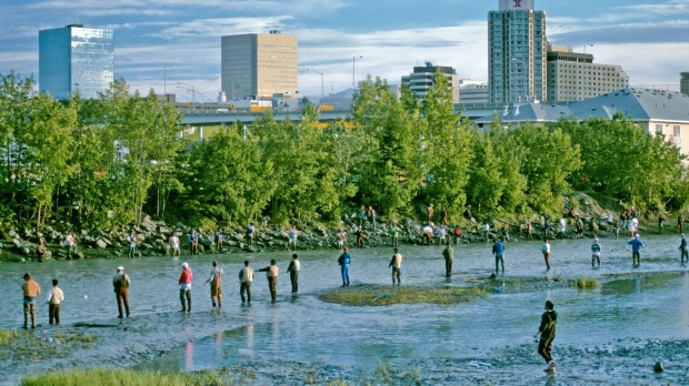 Salmon fishing at Ship Creek. Even in downtown Anchorage you can bag salmon, trout or Arctic grayling.