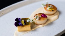 Scallops with celeriac puree and avocado brulee.