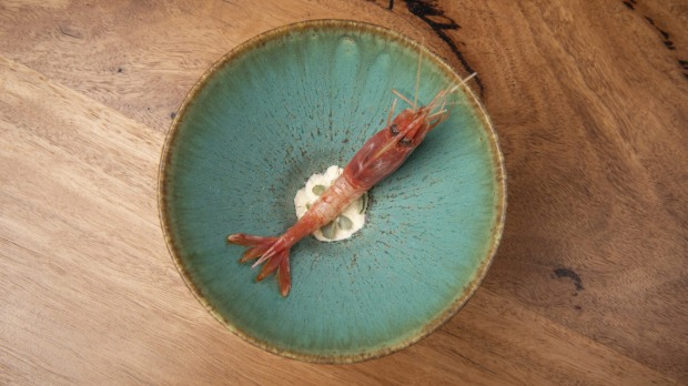 Ama ebi prawn with boab fruit and saltbush.