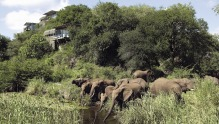 Guests at Singita Lebombo Lodge, within Kruger National Park, see an astonishing array of wildlife up close.