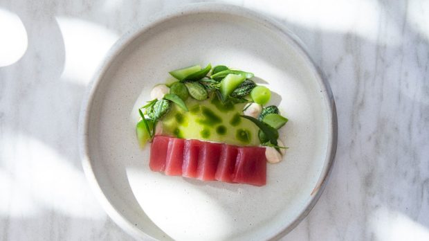 Supplied – Thu, 3. October 2019 3:37 PMTunaCrudo_RaesDiningRoom.jpgTuna crudo, mullet baccala, cucumber, lemon myrtle, greens at Raes on Wategos, Byron Bay. Supplied photo for Good Food Magazine (Nov 2019) Byron Bay travel story.