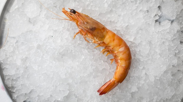 Cooked king prawns are general good all-rounders.