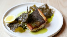 Murray cod with macadamia, vine leaf and salsa verde.