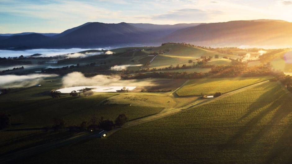 Yarra Valley is just an hour from Melbourne and boasts world-class wines and experiences.