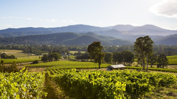 The stunning scenery of the King Valley wine region.