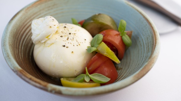 Burrata with heirloom tomatoes.