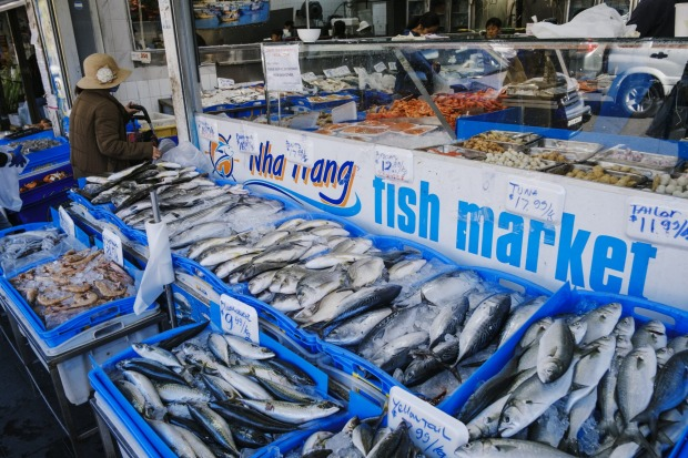 Bountiful seafood options at the local fish market in Bankstown.