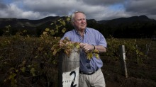 Bruce Tyrrell, managing director of Tyrrell's Wines, said the June long weekend brought record sales after months of ...