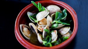 Clams opened over the fire and served in a pool of buttery juices at Osteria Il Coccia at Ettalong Beach.
