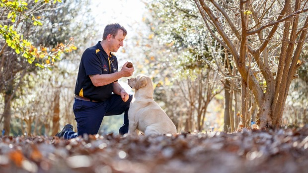 Australian Truffle Traders' Gavin Booth and sniffer dog Molly.
