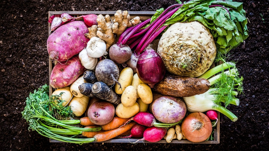 A seasonal vegetable box subscription is something to look forward to, and will push you out of your cauliflower comfort ...