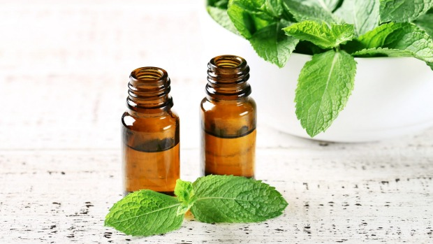 Mint leafs with essential oil on white wooden table Peppermint oil iStock