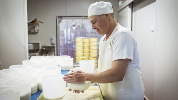 Burke Brandon in Prom Country's cheesemaking room.