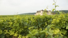 We can't travel to Burgundy right now, but we can always sip the region's wine.