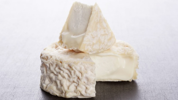 Delicious goat cheese on dark grey background. Culinary cheese eating. Goat's cheese iStock