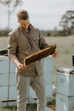 Ben Murphy checks his hives in an East Gippsland clearing.