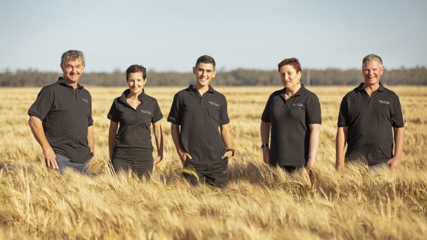 The Whitton Malt House team in the field that supplies barley for the malt. Amy Cooper story for Good Food, Nov 17, 2020