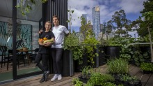 Chefs Matt Stone and Jo Barrett at the pop-up Greenhouse at Federation Square.