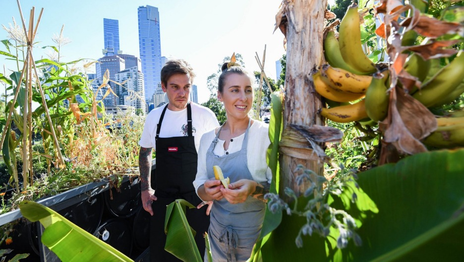 Matt Stone and Jo Barrett are growing food in the middle of the CBD.