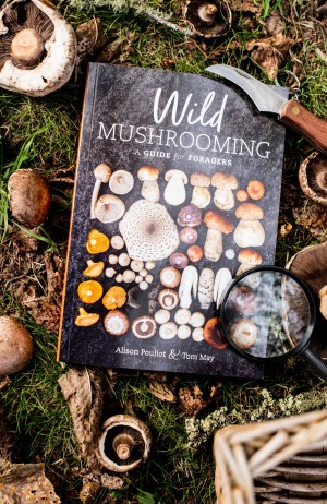 Pouliot's new book, Wild Mushrooming.
