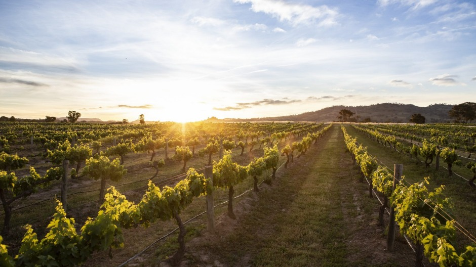 Mudgee is a high-quality wine region that has a long and proud history.