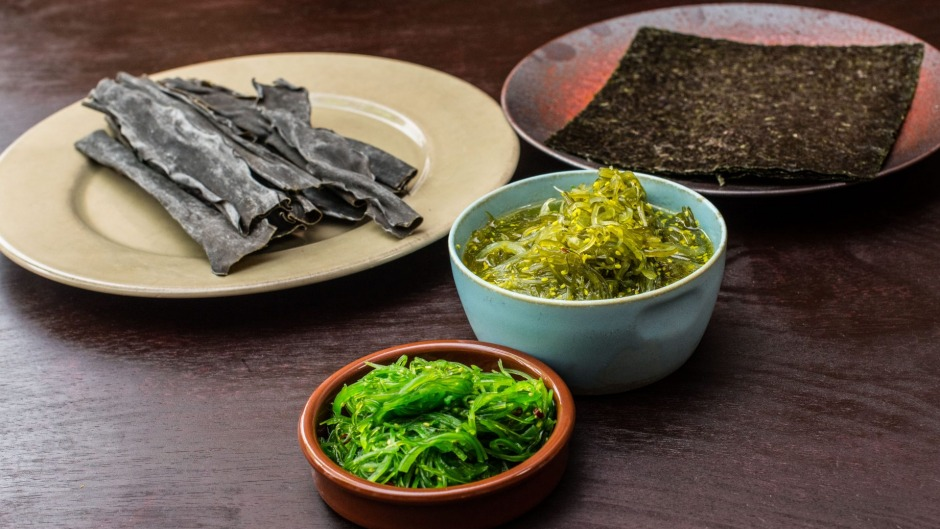 Seaweed in its many forms.