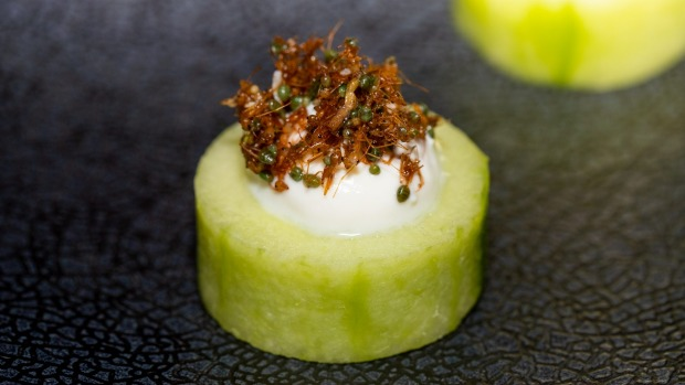 Cucumber with green ants.