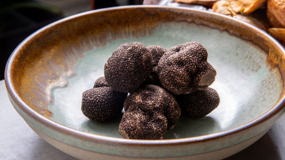 Freshly found luxe fungi from Red Hill Truffles this week.