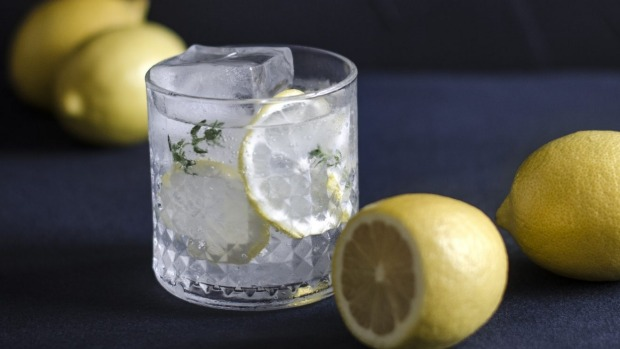 dark and moody glass with lemon drink Gin and tonic generic iStock