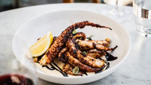 Char-grilled pale octopuswith roasted chickpeas and tahini at Love.Fish, Barangaroo.