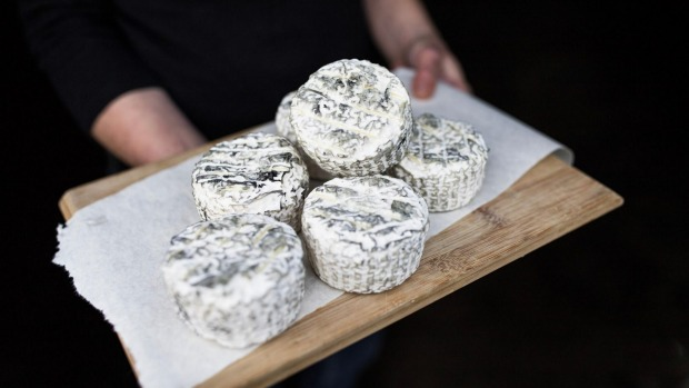 Mould-ripened cheese from Pecora Dairy.